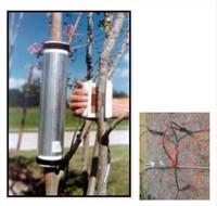 树木(植物)内部水分流动检测系统
