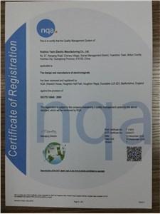 TS16949证书(英文版)