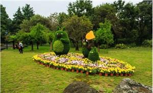 创意绿雕景观制作