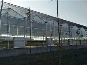 山东温室控制系统案例