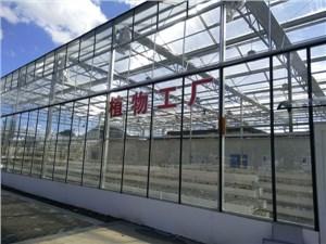 植物工厂的自动化控制系统